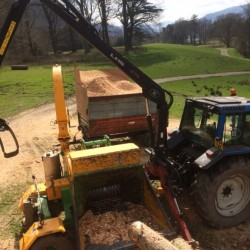 Biomass Chipping